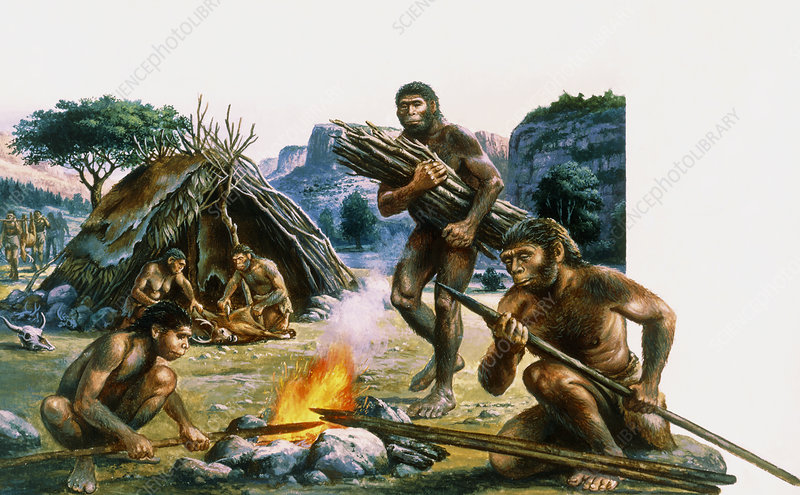 Tribe of homo erectus making weapons