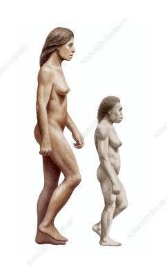 Modern human and Homo floresiensis
