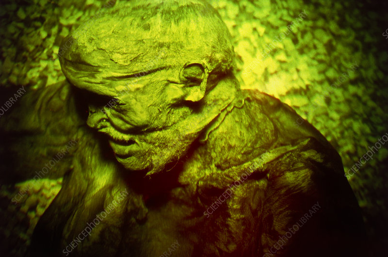 Hologram of the mummified body of Lindow Man