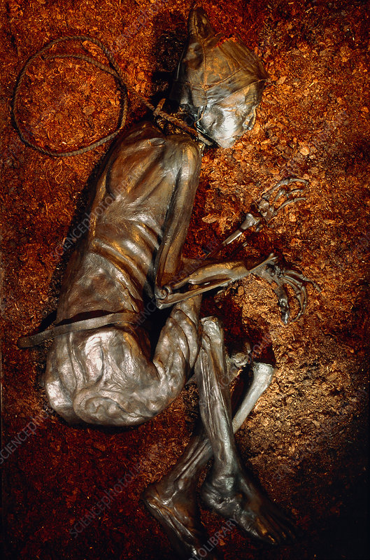 The mummified well-preserved body of Tollund Man