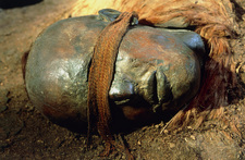 The mummified head of Windeby Girl, a bog body