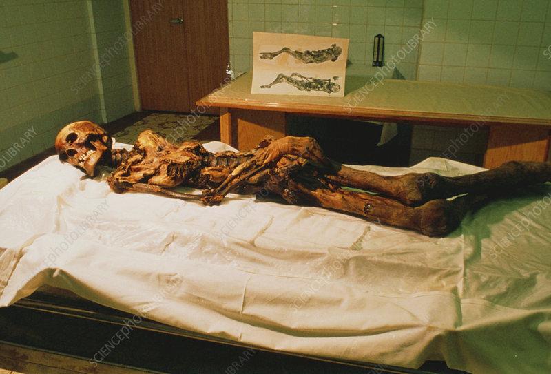 Preserved body of the Pazyryk Ice Maiden
