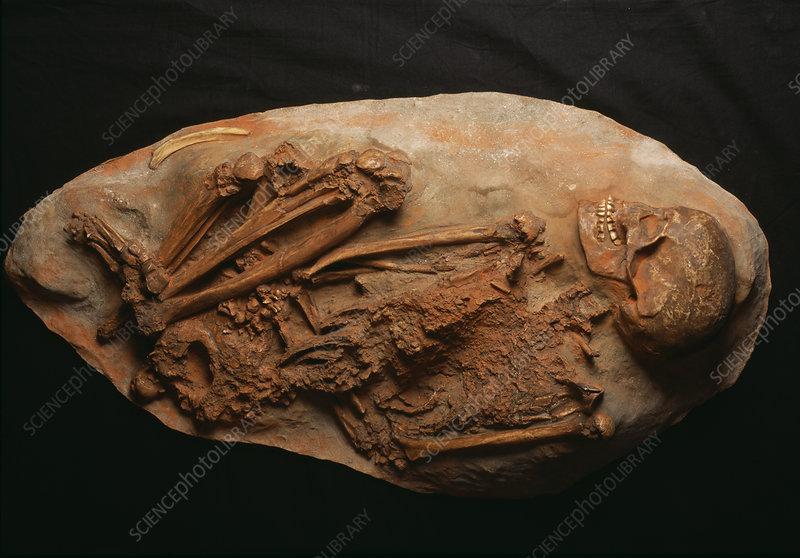 Cro-Magnon skeleton