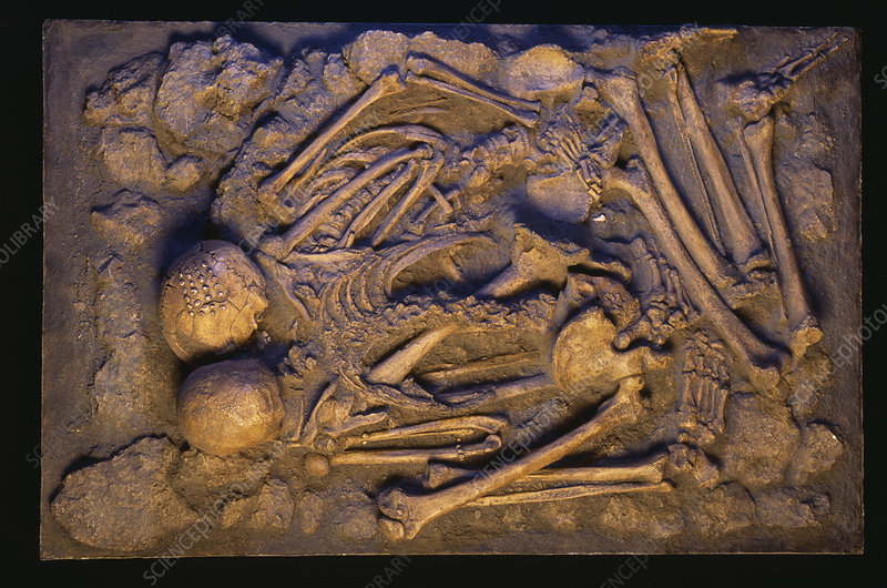 Stone age human skeletons
