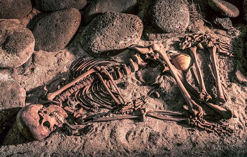 Burial of a Viking woman