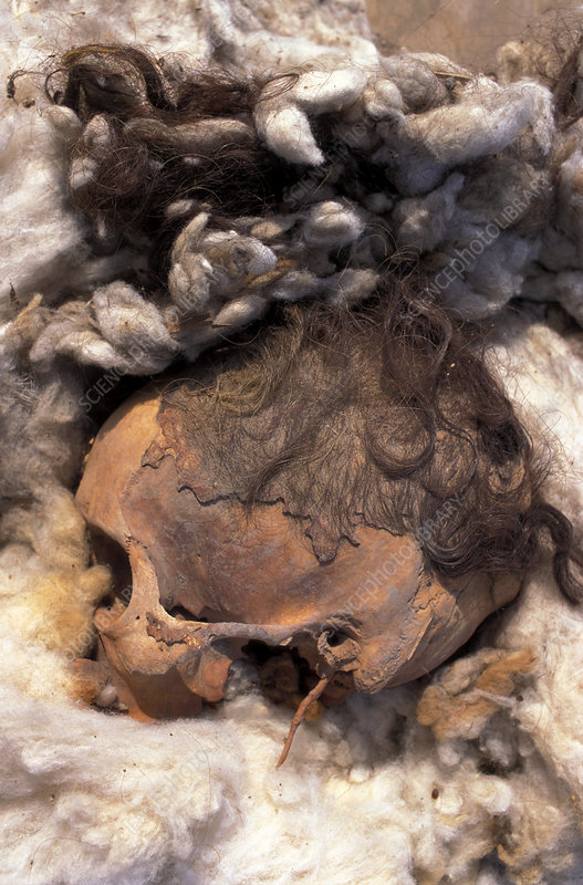 Mummified remains from Al-Fustat, Egypt