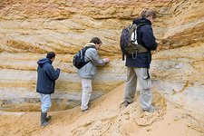 Palaeontologists searching for amber