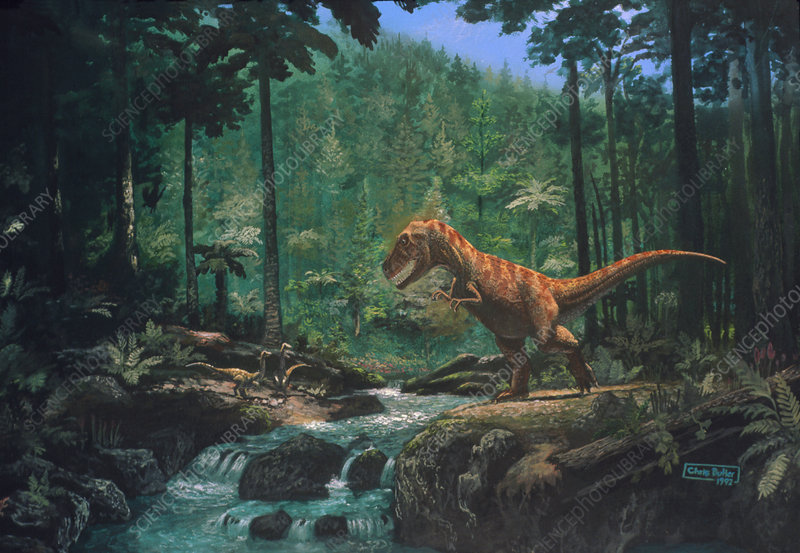 Artwork of a Tyrannosaurus seen in a forest