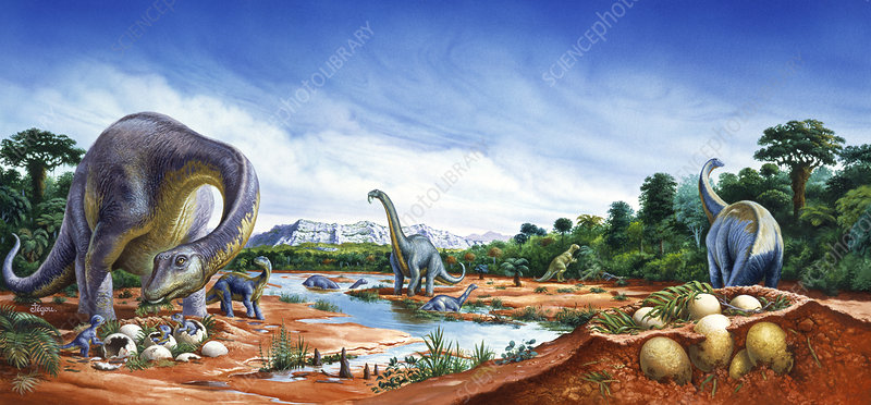 Artwork of a herd of Titanosaurs by a river