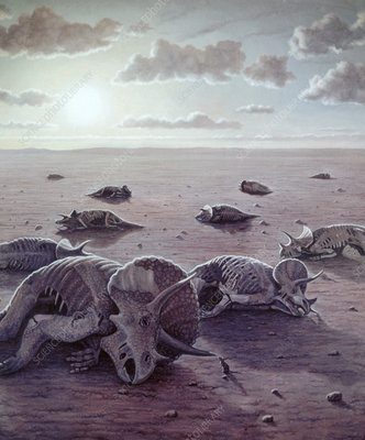 Why Did the Dinosaurs Die Out? Fungi May Hold the Key