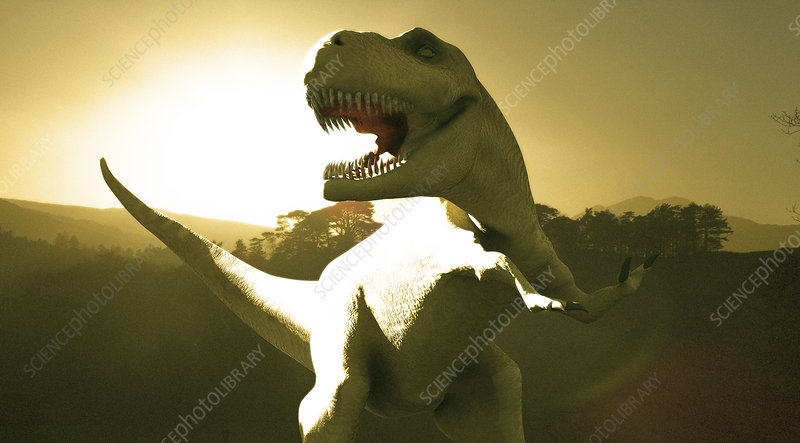 dinosaur christian singles Other scientists, called creation scientists, have a different idea about when  dinosaurs lived they believe they can solve any of the supposed.