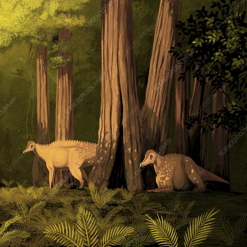 Corythosaurus in trees, artwork