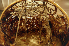 Palaeolithic hut made from mammoth bones