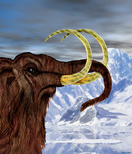 Art of a woolly mammoth