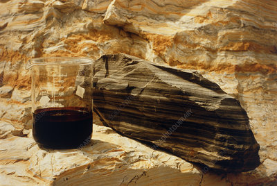 Block of oil shale