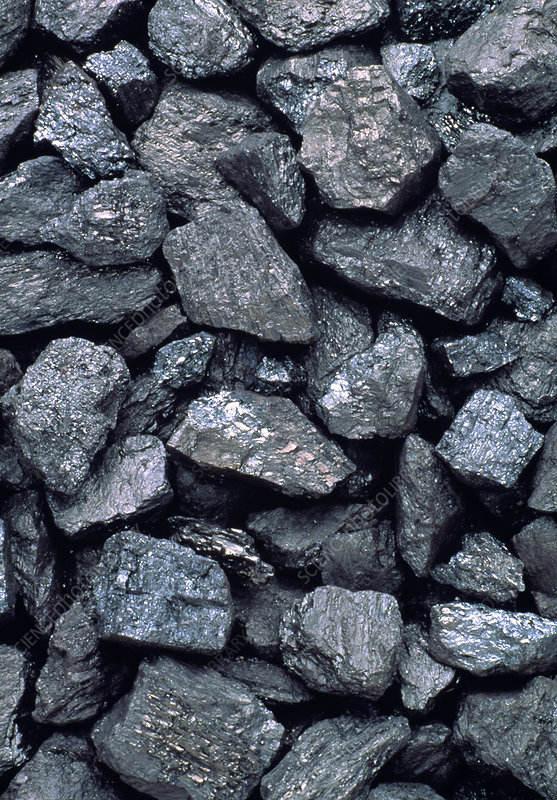 Lumps of high-grade anthracite coal