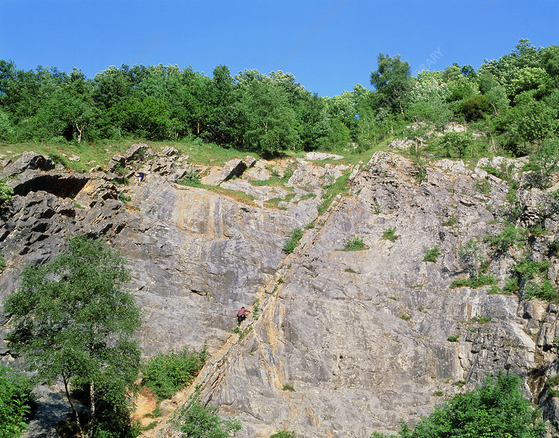 Bedding plane on weathered limestone cliff