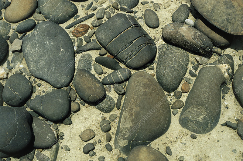 Close-up of wind eroded pebbles in a desert