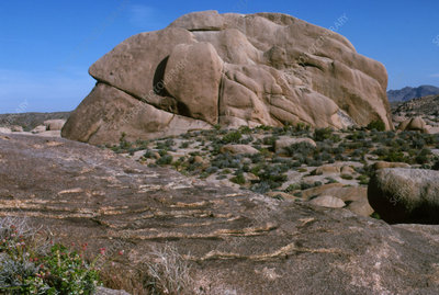 View of granite rock undergoing exfoliation