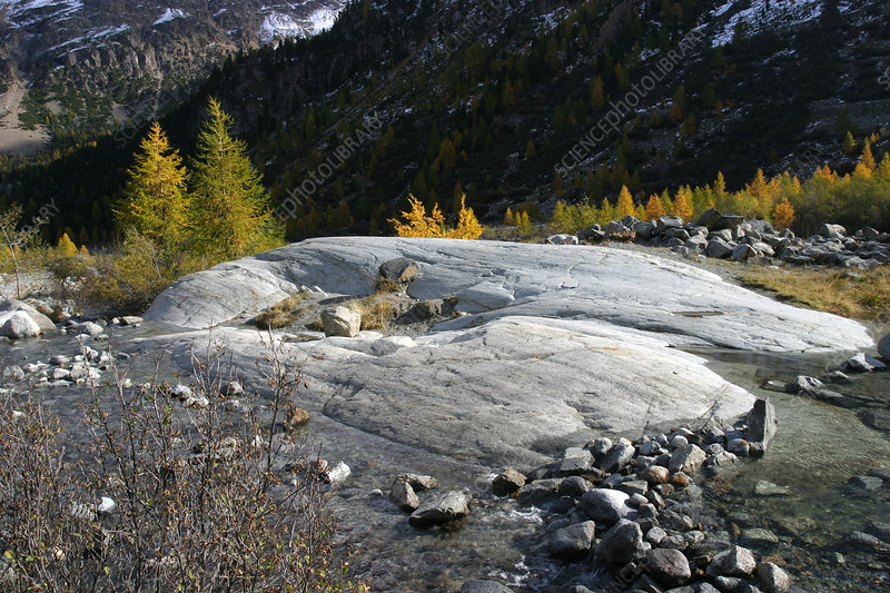 Rocks eroded by the Morteratsch glacier