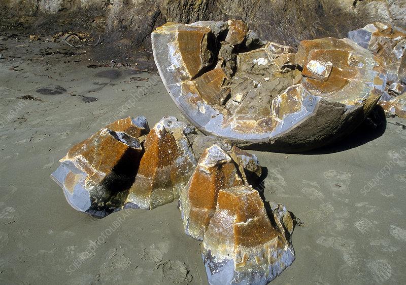 Moeraki boulder fragments, New Zealand
