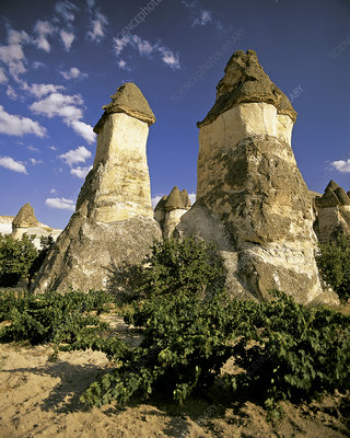 'Fairy Chimneys of Cappadocia, Turkey'