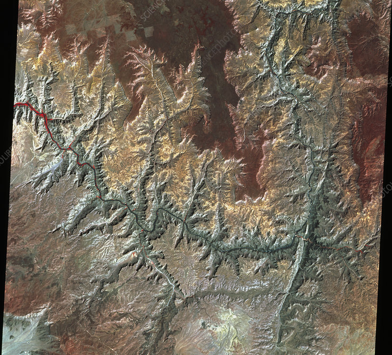 Infrared satellite image of the Grand Canyon, USA