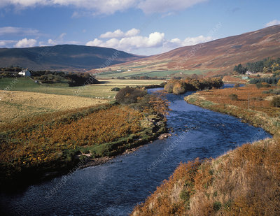 The river Helmsdale, Scotland