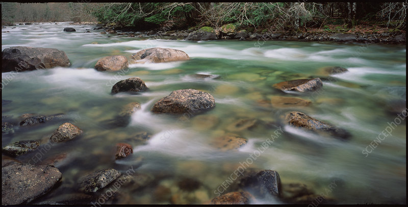 Mountain river in early spring, British Columbia
