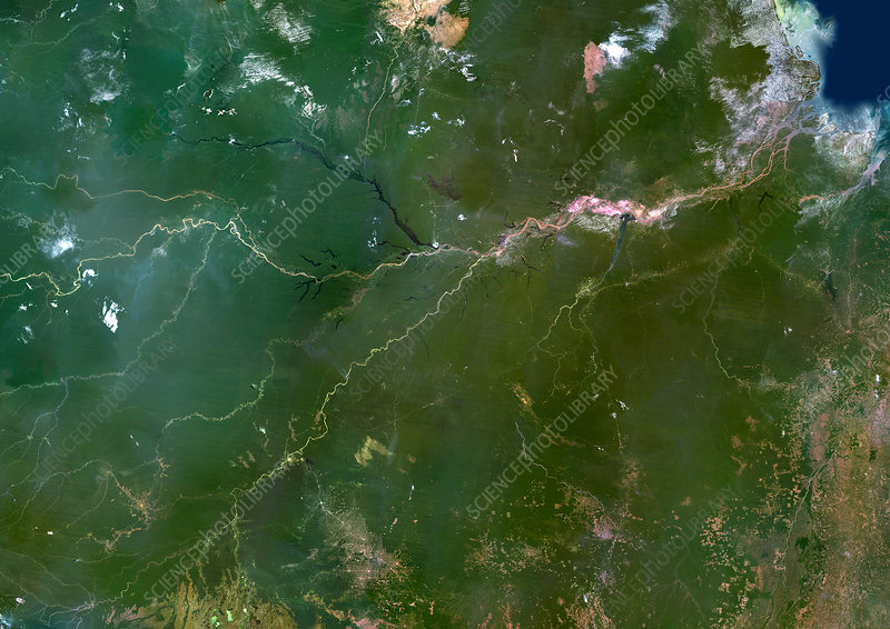 Amazon River, satellite image