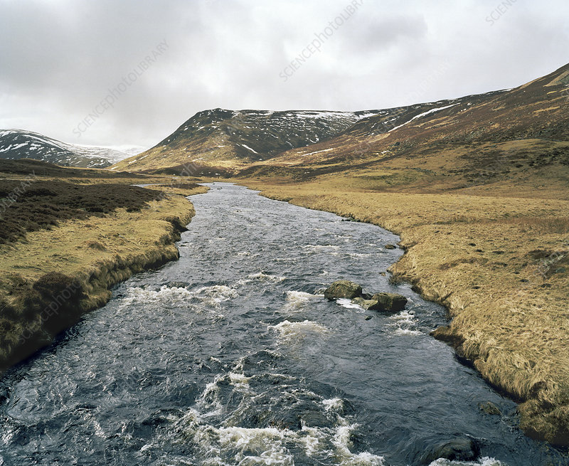 Mountain river, Scotland