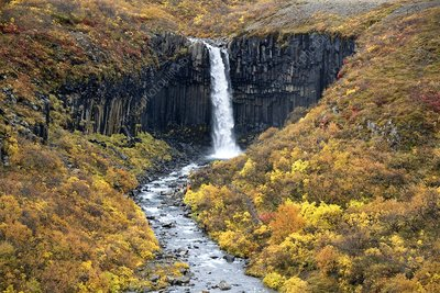 Waterfall and basalt rock, Iceland