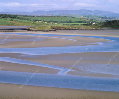 View of the tidal estuary of Bracky river, Ireland