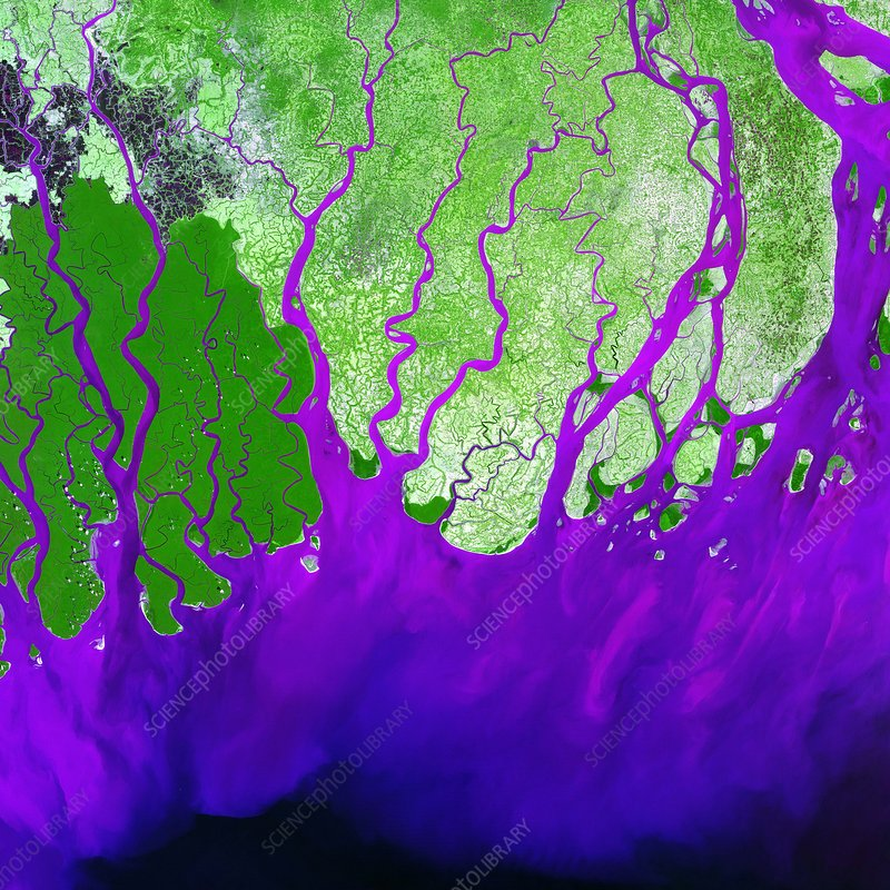 Ganges Delta - Stock Image E552/0104 - Science Photo Library