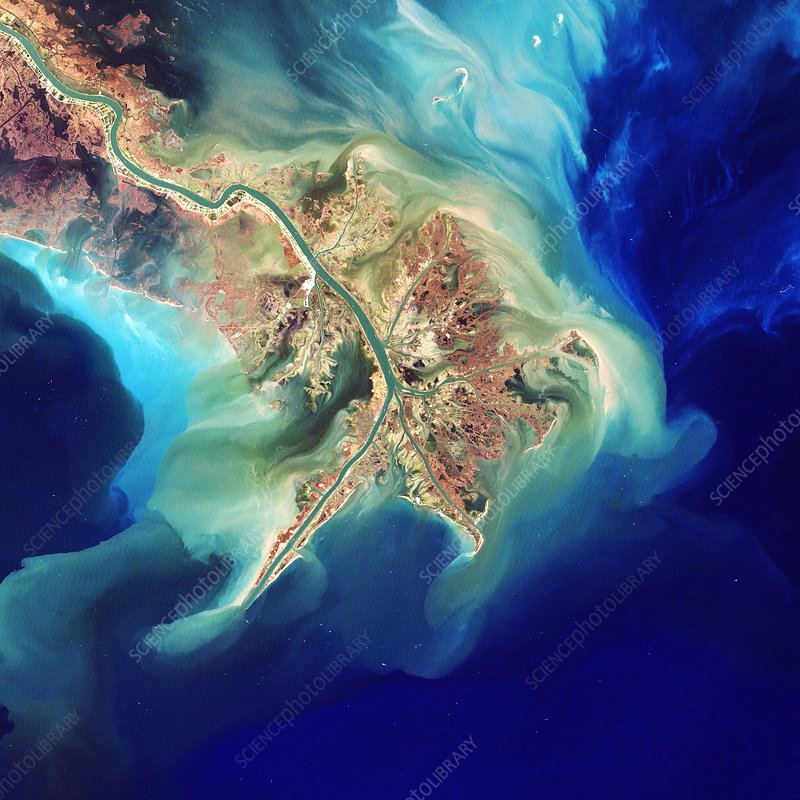 Mouth of the Mississippi, Landsat image