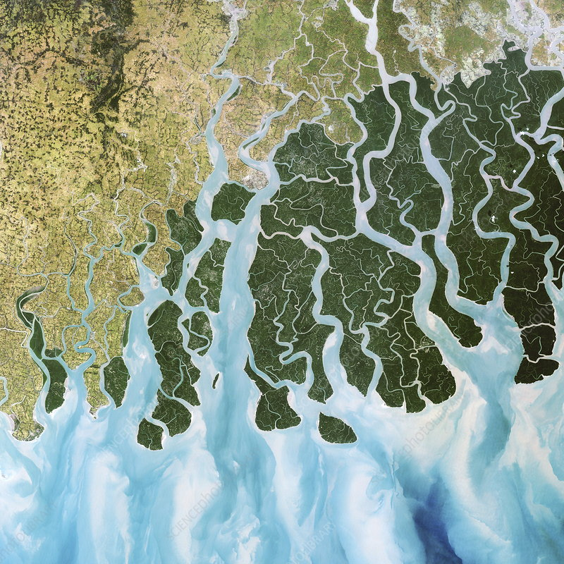 Ganges River delta, India - Stock Image - E552/0123 ...