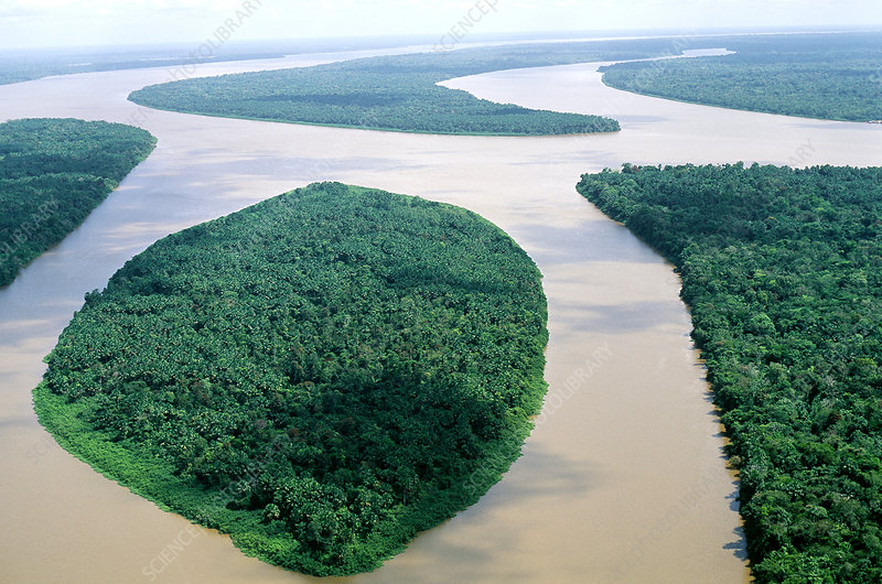 Islands in the Amazon Estuary