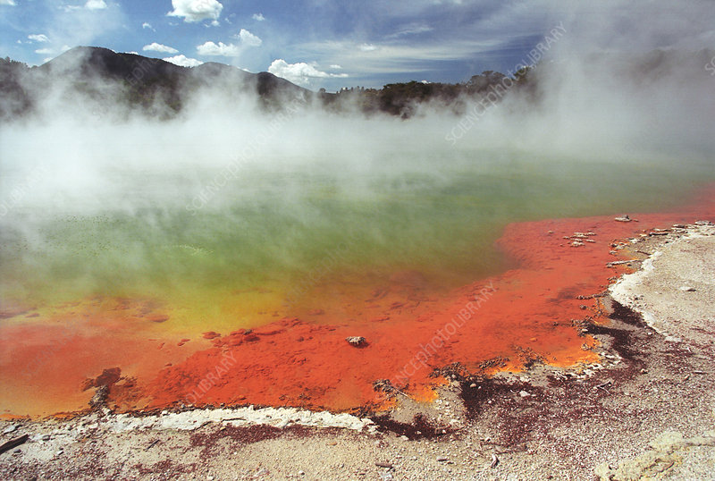 Geothermal pool, New Zealand