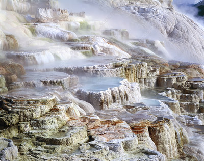 Mammoth Hot Springs mineral terrace