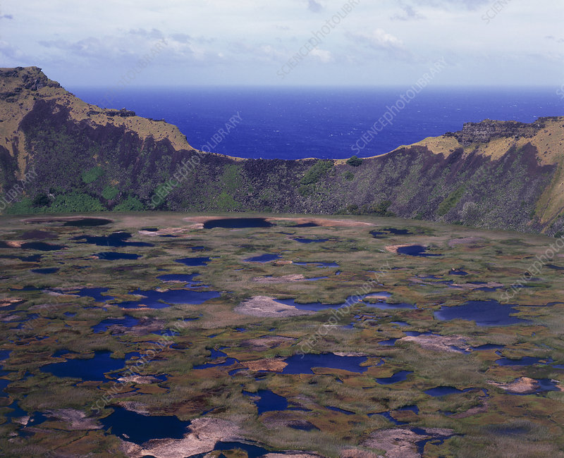 Peat bog in Rano Kau volcano crater, Easter Island