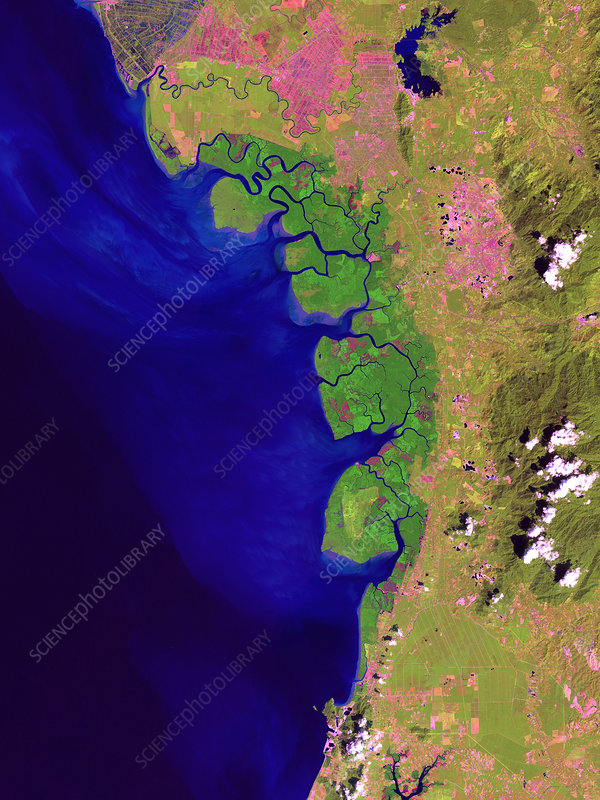 Matang Mangrove Forest, satellite image