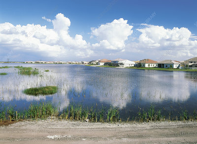 Houses in Everglades