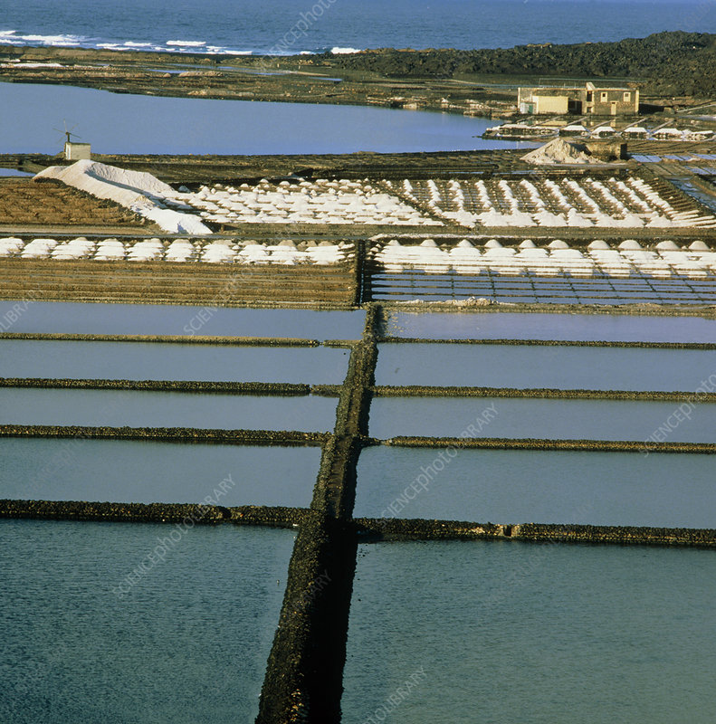 Commercial sea salt extraction pans