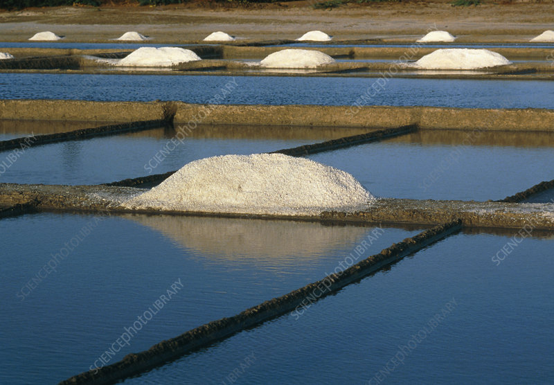 Piles of salt beside salt pans