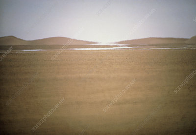 Mirage in the Tanzerouft desert, Algeria