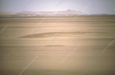 Mirage seen in the Tanzerouft desert, Algeria
