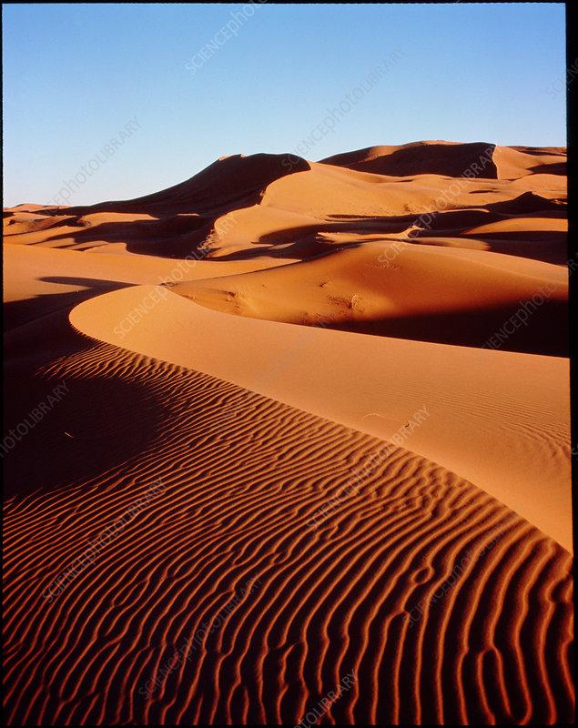 E6200338-Sahara_sand_dunes-SPL.jpg