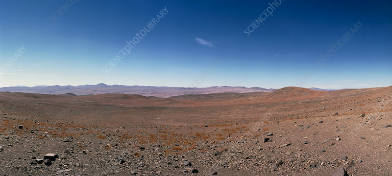 Rocky plain of the Atacama Desert, N.Chile