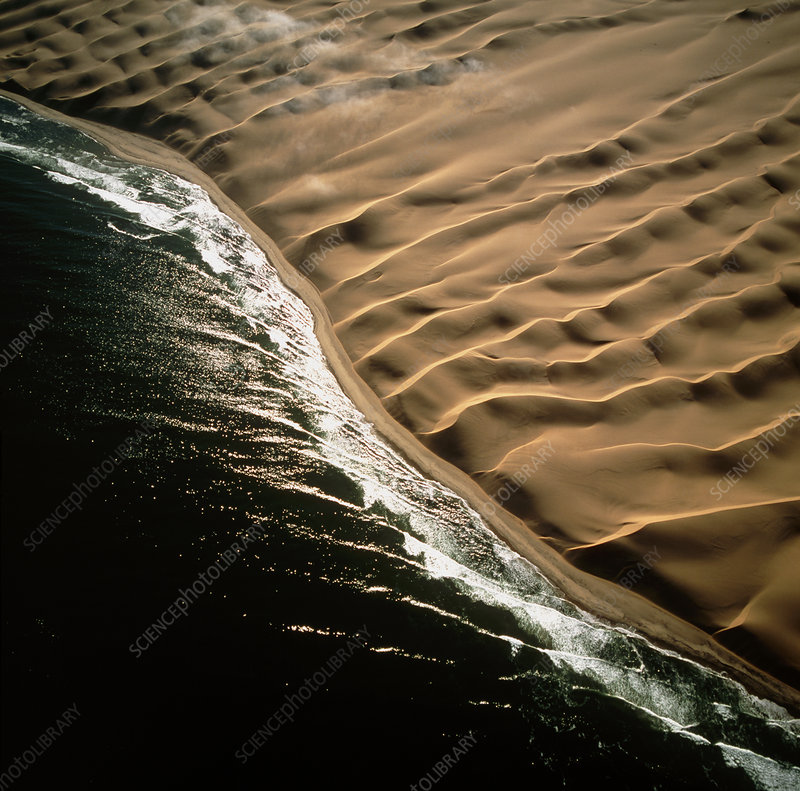 View of Namib desert dunes meeting the ocean