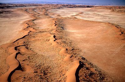 'Aerial view of linear sand dunes, Namibia'